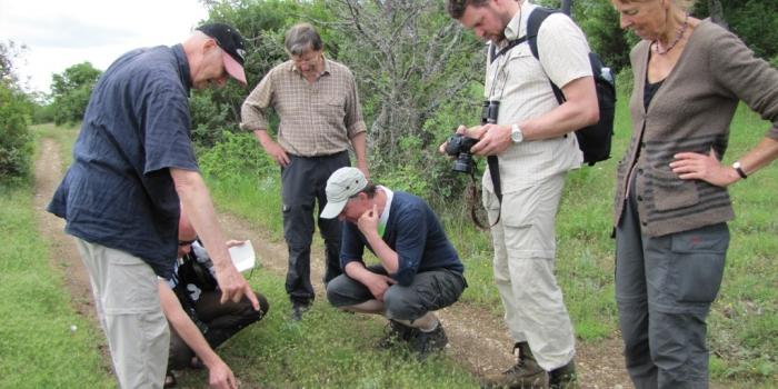 Организиране на инфо турове в България