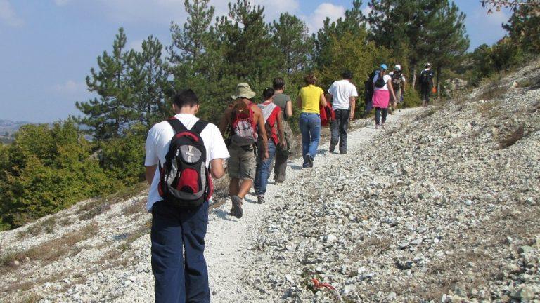Въведение в професията на планинския водач